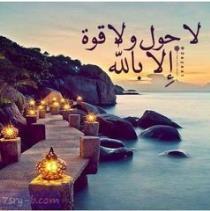 محمد ماهر
