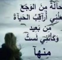 احمد محمد علي البيشي