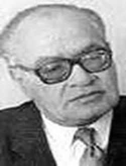 عبد الرحمن الشرقاوي