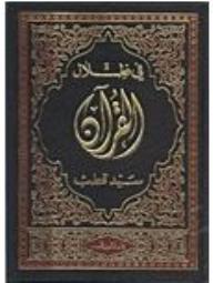 في ظلال القرآن - سيد قطب